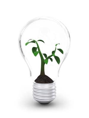 How to nurture an idea