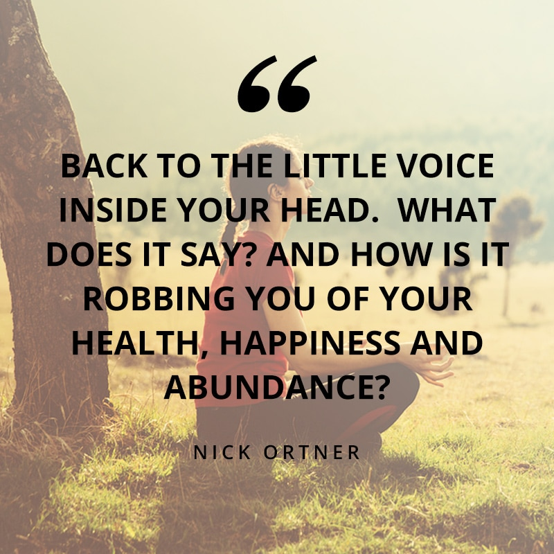 quote-quieting-the-voice-email